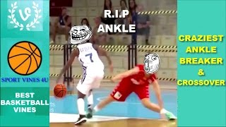 Download The CRAZIEST Ankle Breakers and Crossovers 2017 - Best Basketball Moments Video