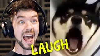 Download CHILD GETS SCARRED FOR LIFE | Jacksepticeye's Funniest Home Videos #4 Video