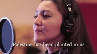 Download Arabic Sad Song palestine Video