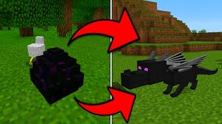 Download How To Hatch the Ender Dragon Egg in Minecraft Pocket Edition (1.0+) Video
