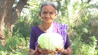 Download How To Cook Cabbage Recipes Village Style By My Grandma || Myna Street Food Video