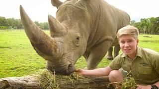 Download Robert Irwin's virtual Australia Zoo tour! Video