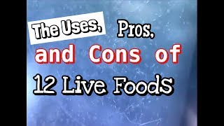 Download Live Fish Food: The Uses, Pros and Cons Video