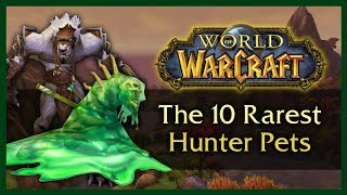 Download THE 10 RAREST UNOBTAINABLE HUNTER PETS - WOW 8.0.1 Video