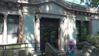 Download New York - Bronx Zoo Video