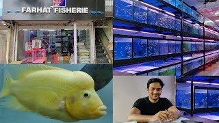 Download Farhat Fisheries Aquarium Fish Store Kurla Video