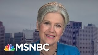 Download Jill Stein: Election Recount Is About The American People | MSNBC Video