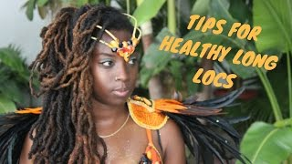 Download LOC MAINTENANCE I TIPS TO GET LONG HEALTHY LOCS/HAIR I ESSENCEOFSHAY Video