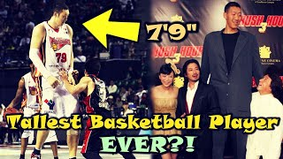 Download The Story Of A Basketball GIANT: Sun Mingming Video