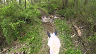 Download Hunter Pace 5 GoPro Raw Video Video