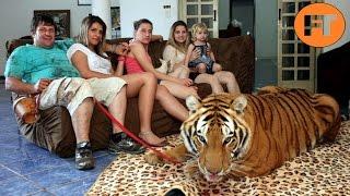Download Top 8 Animales Salvajes Adiestrados que no Podrás Creer - FULL TOPS Video