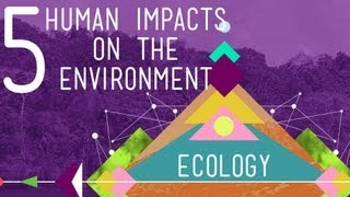 Download 5 Human Impacts on the Environment: Crash Course Ecology #10 Video