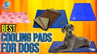 Download 10 Best Cooling Pads For Dogs 2017 Video