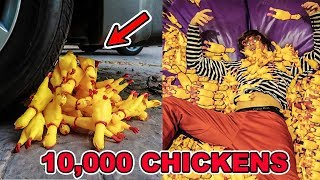 Download 10,000 RUBBER CHICKENS EXPERIMENTS Video