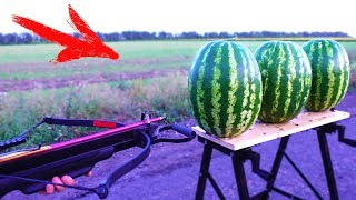 Download EXPERIMENT: CROSSBOW VS WATERMELON Video