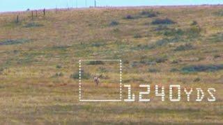 Download 2017 Extreme Long Range Kill Shots Video