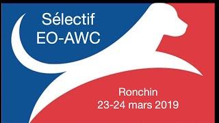 Download Sélectif EO-AWC 2019-2-Ronchin (dimanche) Video