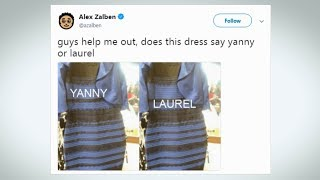 Download Yanny or Laurel: What do you hear? Video