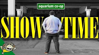 Download My Local Fish Store - I OWN IT Video