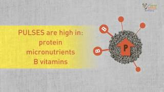 Download What are pulses and why are they important crops for food security Video