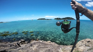 Download Fishing a Tropical Island Video