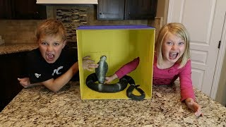 Download WHAT'S IN THE BOX CHALLENGE!! | LiVE ANiMAL! Video