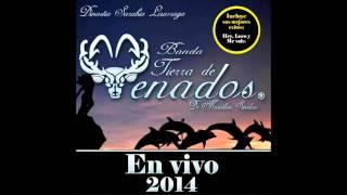 Download Banda Tierra De Venados-El Sinaloense, Marinero de Mazatlán, El Coyotito.....(Disco En Vivo) 2014 Video