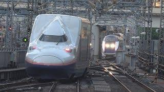 Download 東京駅でダイヤの乱れで入線待機する新幹線を撮ってみた Video