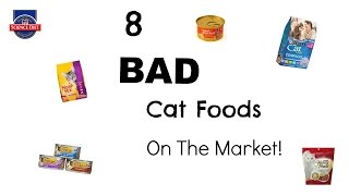 Download 8 Bad Cat Foods On The Market Video