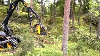 Download Ponsse Beaver, H6, C22, aukolla - HD720p Video