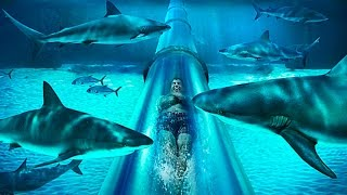 Download 10 Most Insane Waterslides In The World Video