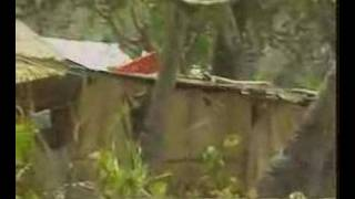 Download East Timor border contact at Motaain 10/10/1999 Video