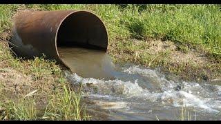 Download كارثة.. المصريون يأكلون من مياة الصرف الصحي | انتباه Video