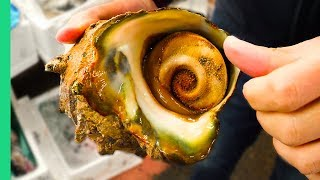 Download GIANT ALIEN SNAIL in JAPAN!!! Digging Deep in Tokyo's Famous Fish Markets! Video