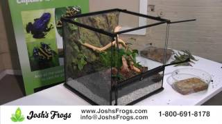 Download Dart Frog Vivarium Set Up - Start to Finish Video