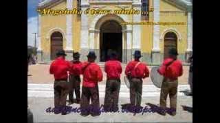Download ALAGOINHA PE PASSADO E PRESENETE Video