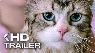 Download NINE LIVES Exklusiv Trailer German Deutsch (2016) Video