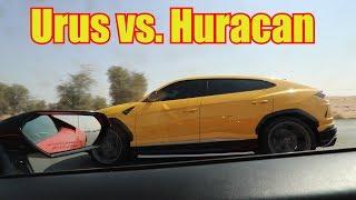 Download Urus DESTORYS Rental Lamborghini Huracan! Video