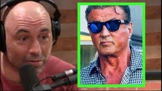 Download Joe Rogan - Sylvester Stallone is an Animal! Video