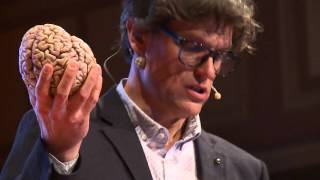 Download Brain concussion - Shake it and you break it | Steven Laureys | TEDxLiège Video