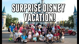 Download SURPRISE DISNEY FAMILY VACATION!!! - ItsJudysLife Vlogs Video