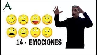Download 14 Manejo de sentimientos y Emociones Video