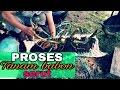 Download Bonsai art - Proses tanam Bakalan bonsai Serut ( Streblus asper ) #cara saya Video