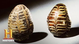 Download Ancient Aliens: The Space Eggs (S11, E6) | History Video