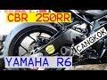 Download CBR 250RR modif arm YAMAHA R6 Moge | DANDER MOTOVLOG | Video