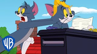 Download Tom & Jerry | Protect the Recipe Tom! | WB Kids Video