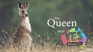 Download MARRIAGE EQUALITY AUSTRALIA: The Queen Says Yes! Video