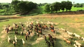 Download Ca khúc về thành phố Sông Công P1 Video