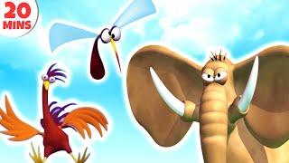 Download GAZOON   Funny Animals Cartoons Compilation   HooplaKidz TV Video