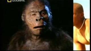 Download El origen del hombre - National Geographic - Español parte 1 de 5 Video